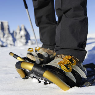 snowshoes-appartements-berfrieden-siusi_allo_sciliar-south_tyrol